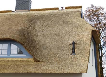 rieten dak mos verwijderen