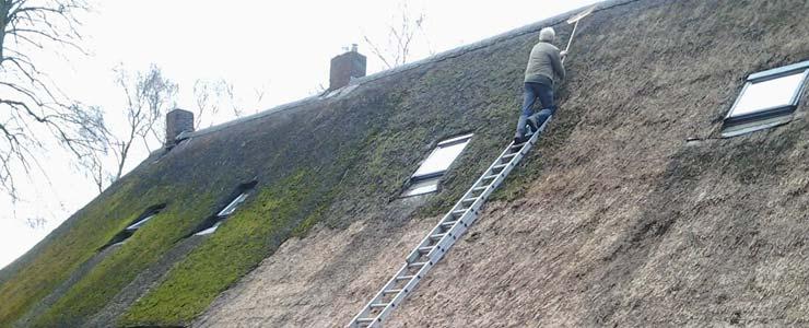 rieten dak ontmossen Elsene
